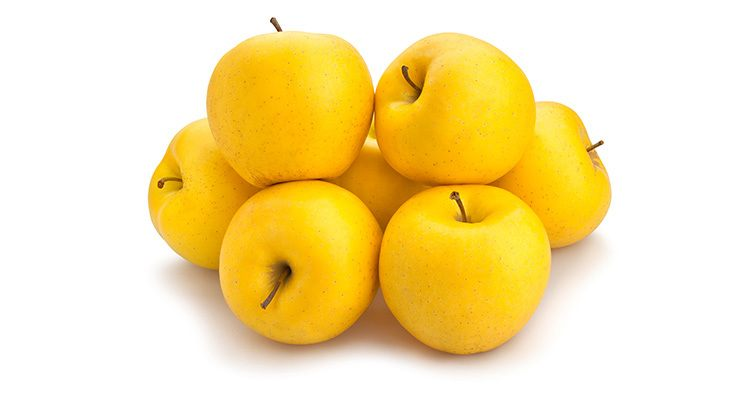 yellow apples path isolated